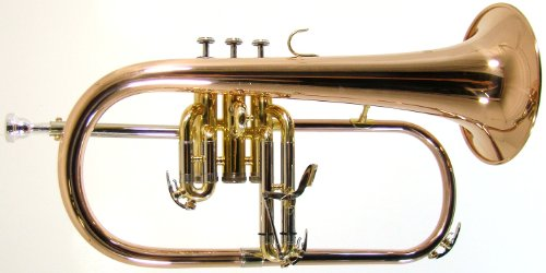 Barrington Model BR FG209 Bb Flugelhorn w/Rose Brass Bell, Nickel Valves