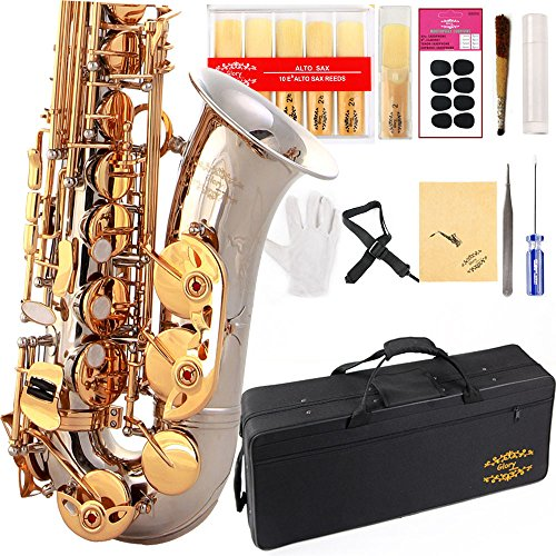 Glory Silver /Gold Keys E Flat Alto Saxophone with 11reeds,8 Pads cushions,case,carekit-More Colors with Silver or Gold keys