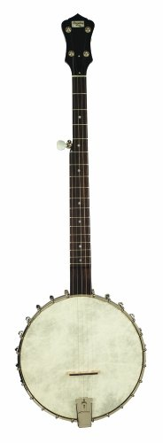 Recording King RK-OT25-BR Madison Open Back Banjo, Scooped Fretboard