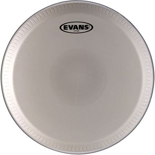 Evans Tri-Center Conga Head, Fits LP 12-1/2 Inch Professional Series
