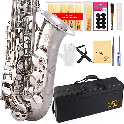 Glory Silver E Flat Alto Saxophone with 11reeds,8 Pads cushions,case,carekit-More Colors with Silver or Gold keys