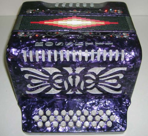 Rossetti 31×12 Button Accordion, Key ADG, Case/Straps/DVD, Purple, 3112 PUR ADG