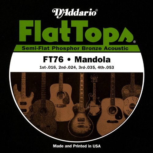 D'Addario FT76 Flat Tops Mandola Strings, Medium, 16-53