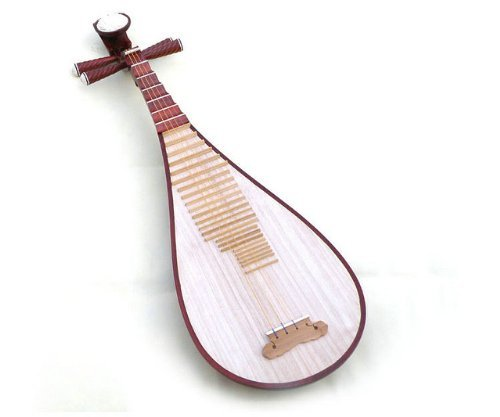 Professional Level Brand New Rosewood Pipa Instrument Chinese Lute Guitar