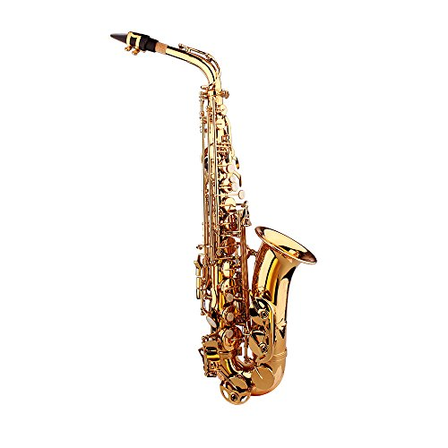 Andoer Saxophone Sax Eb E Flat Brass Carved Pattern on Surface Plastic Mouthpiece Exquisite with Gloves Cleaning Cloth Brush Straps