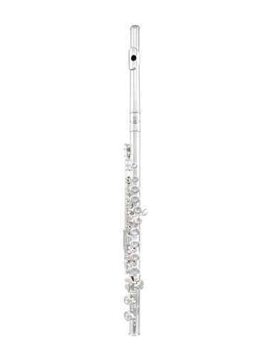 Roy Benson RBFL-402EII Student Flute, With Straight and Curved Headjoints