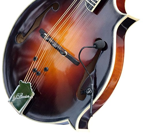 """""""THE FEATHER"""" F-STYLE MANDOLIN PICKUP with FLEXIBLE MICRO-GOOSE NECK by Myers Pickups ~ See it in ACTION! Copy and paste: myerspickups.com"""