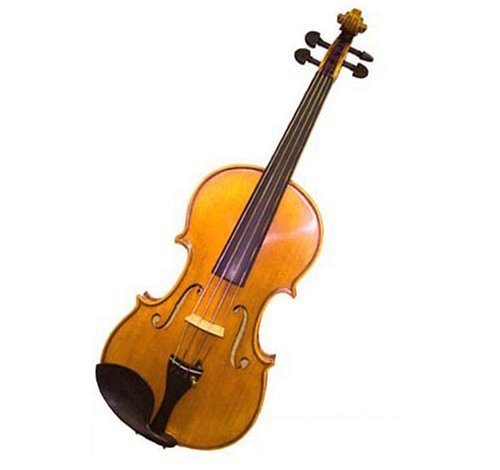 Molinari Romanian High Quality Student Viola Outfit  (13-Inch, Oil Finish)