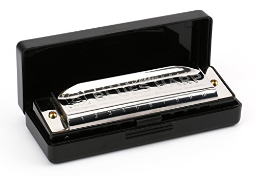 Foraineam 10 Hole Diatonic Blues Harmonica Key of C, Specially Designed For Beginners