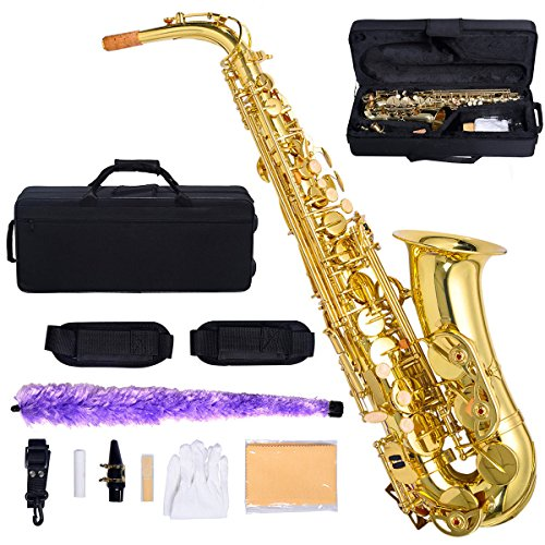 Professional Eb Alto Sax Saxophone Paint Gold with Case and Accessories Sturdy, Lightweight Case With Backpack Straps And Zipper Pocket