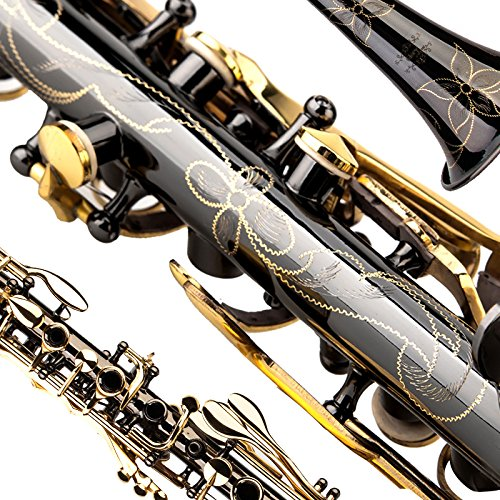 Glory B Flat Metal Clarinet with 11reeds,case,carekit and more,Black Nickel Flowers Design, Click to see more colors