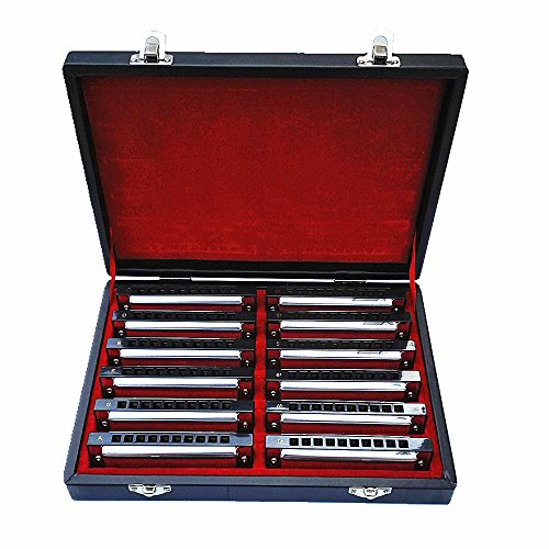 Swan 10 Hole Blues Power Harmonica Blues Harp Harmonica Diatonic Harmonica Set 12 Keys In Gift Box