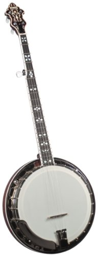 Flinthill FHB-280A Archtop Banjo with Case
