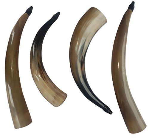 4 Pieces Handmade Buffalo Cheer & Wishing Horn Trumpet 17-19″ with Great and Natural Sound