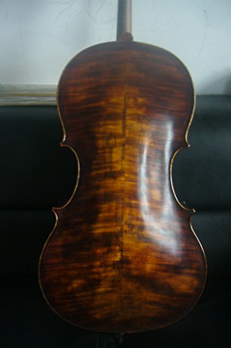 Cello 4/4 Size Maggini Model Flamed Maple Back Old Spruce Top