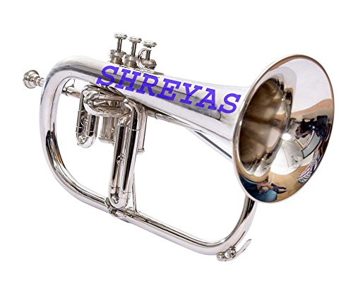 Bb Flat SILVER NICKLE Flugel Horn With Free Hard Case+Mouthpiece