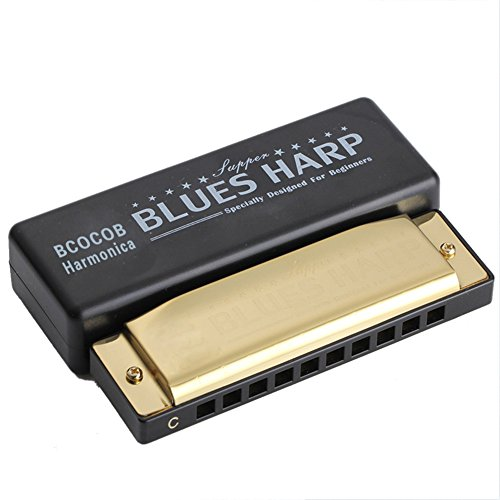 Harmonica Key of C 10 Hole Diatonic Harmonica C with Case for Beginner,Students, Kids Gift