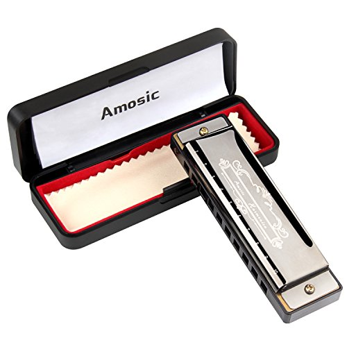 Amosic Diatonic Harmonica 10 Holes 20 Tones, Blues Harmonica Stainless Steel with Case, Key of C, Suitable for Beginners, Professional Players