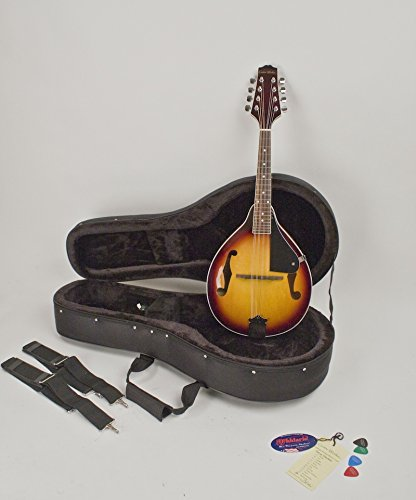 A-STYLE MANDOLIN SUNBURST FINISH COMPLETELY SET-UP & ADJUSTED IN MY SHOP FOR EASY PLAY WITH HARD FEATHERLITE CASE
