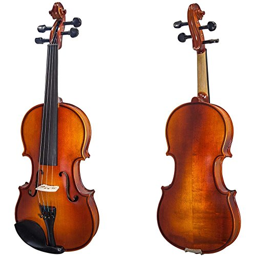 Paititi 4/4 Full Size Solid Wood Ebony Fitted Violin with Bow Lightweight Case
