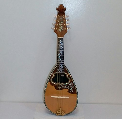 Dila Roza Handcrafted Mother Pearl Abalone Inlay Wood Mandolin With Hard Case