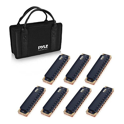 Pyle Professional Brass Metal Covered 10 Hole 7 Piece Diatonic Harmonica Kit – Blues Harp Set Includes Storage Case and Polishing Cloth – Key of C -Great for Pro, Beginner Lessons or Band – PHARM48ST