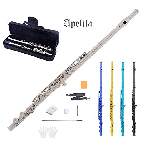 Apelila Flutes – C Key Flute 16 Closed Hole Silver Nickel Plated with Care Case, Cork Grease, Cleaning Cloth, Strap, Cleaning Stick, Screwdriver, Gloves