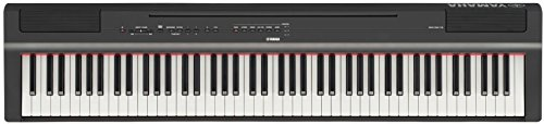 Yamaha P125 88-Key Weighted Action Digital Piano with Power Supply and Sustain Pedal, Black