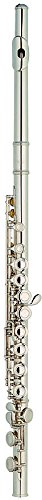 TIC New York HFL200 Closed Hole C Flute Plated Body, U.S Pads with Case and Cleaning Rod, Silver