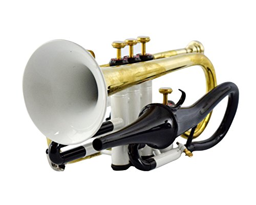 CORNET Bb PITCH WHITE+BRASS COLOR WITH HARD CASE AND MOUTHPIECE