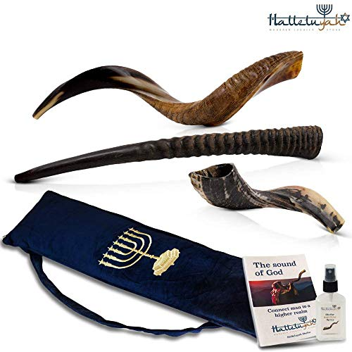 HalleluYAH Set of 3 Horn Shofar: Kudu 28″-32″, Oryx, Ram | Kosher Shofar – Traditional Ancient Musical Instrument For Jewish Spiritual Ceremonies And Religious Sermons –Authentic Curved Made In Israel