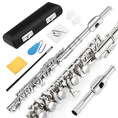 Eastar EPC-1 Nickel Plated Piccolo Key of C With Hard Case Fingering Chart, Cleaning Rod, Cloth, Swab and Gloves