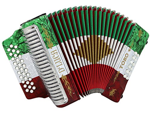 D'Luca D3112T-FBE-MX Toro Button Accordion 31 Keys 12 Bass on FBE Key with Case and Straps, Red/White/Green