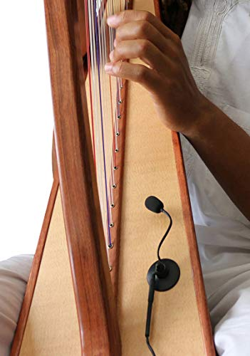 """CHROMATIC-STRUNG HARP MICROPHONE,""""THE FEATHER"""" with FLEXIBLE MICRO-GOOSE NECK by Myers Pickups ~ See it in ACTION! Copy and paste: myerspickups.com, Harp Microphone"""