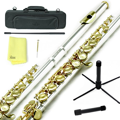 Sky C Flute with Lightweight Case, Cleaning Rod, Cloth, Joint Grease and Screw Driver – Silver/Gold Closed Hole