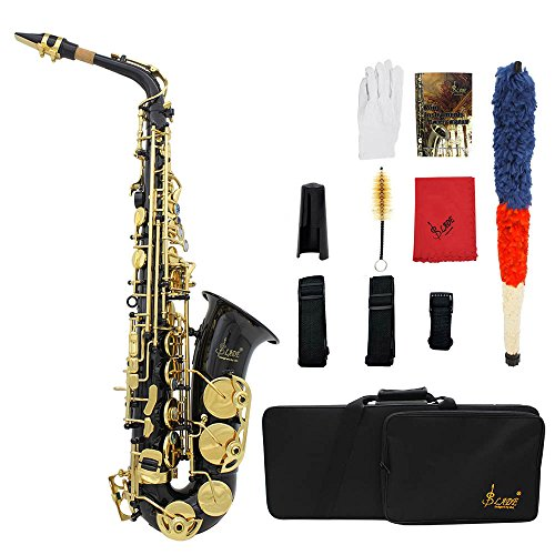 Festnight Saxophone, Brass Engraved Eb E-Flat Alto Sax Wind Instrument with Accessories