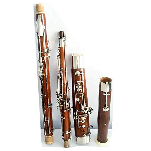 Professional musical instrument bassoon